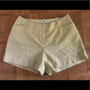 CATO Golden Yellow/White Shorts